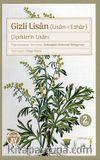 Gizli Lisan (Lisan-ı Ezhar) & Çiçeklerin Lisanı