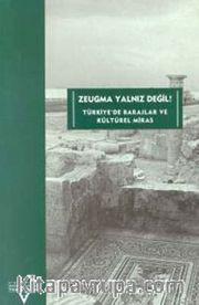 Zeugma Yalnız Değil! <br />Türkiyede Barajlar ve Kültürel Miras