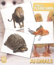 Animals Miracle Flashcards (45 Cards)